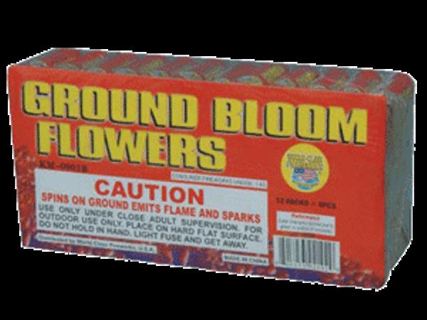 Ground Bloom Flowers
