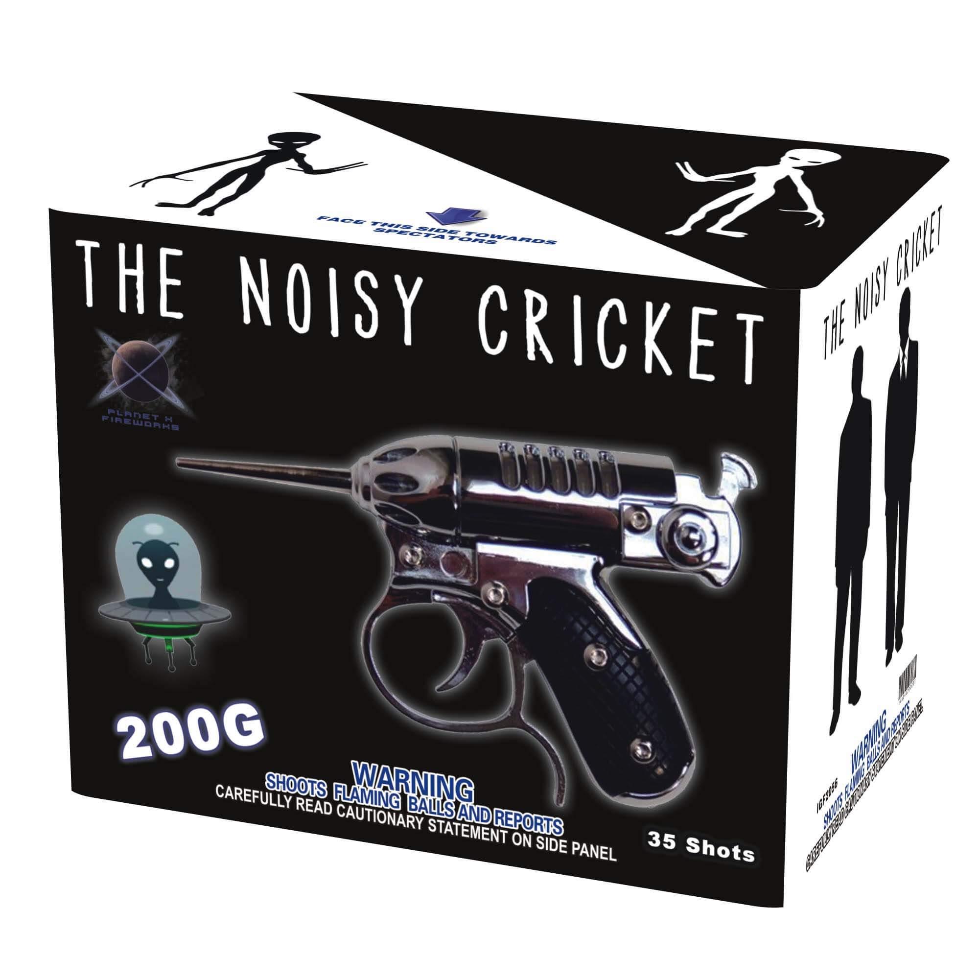 The Noisy Cricket